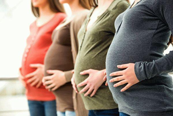 Как рассчитать, когда уходить в декретный отпуск  - по беременности, актеры, по УЗИ, выход