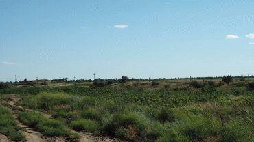 Договор аренды земли с правом выкупа