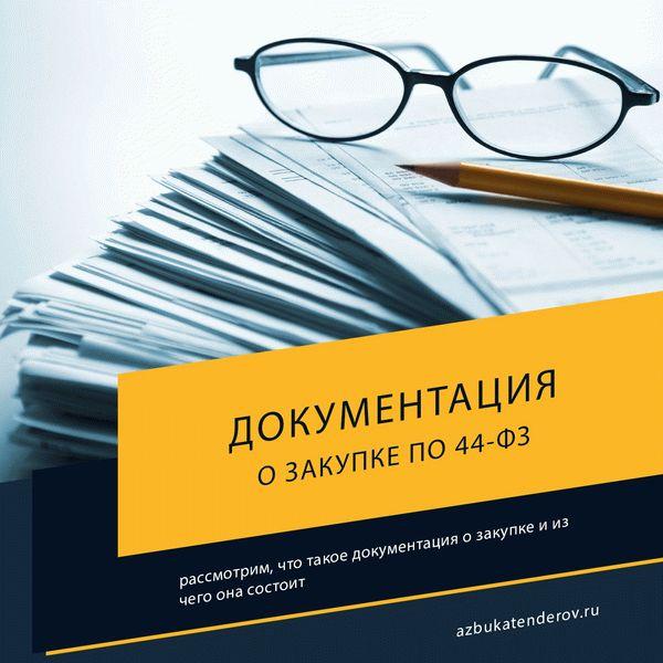 Документация об электронном аукционе по статье 65 44-ФЗ: содержание, разъяснение положений, регламент внесения изменений