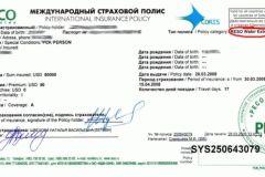 Гражданство швеции для россиян
