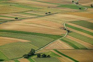 Предварительный договор уступки права аренды земельного участка
